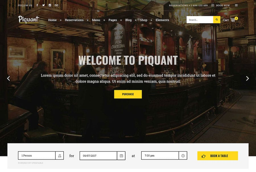 Piquant Website Theme