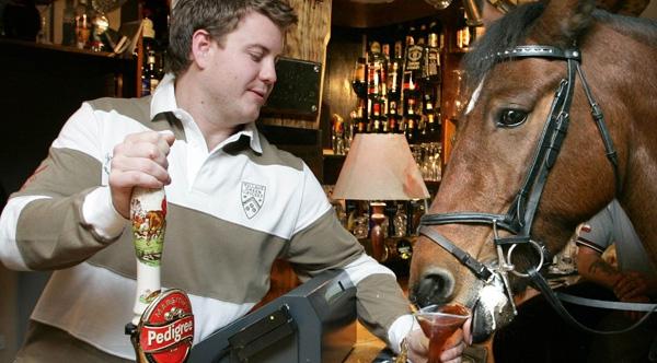 60 Pub Marketing Ideas: How to Market a Pub